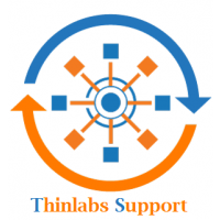 Thinlabs Support Consultation (Standard Business Hours)